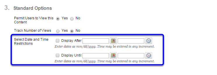 Optional: If you would like to restrict when students can access the file, select the date and time in the Display After and Display Until sections.