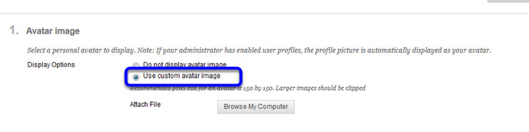 Click the button next to Use custom avatar image.