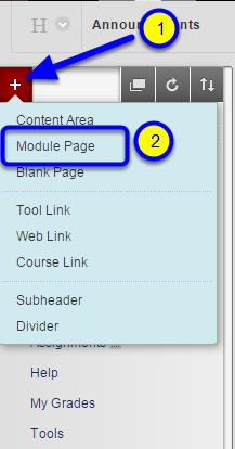 Select Module Page.