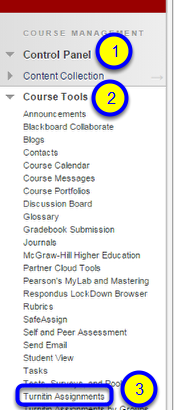 Click on Turnitin Assignments.