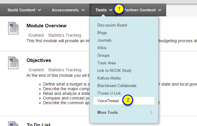 Hover over the Tools menu and select VoiceThread.