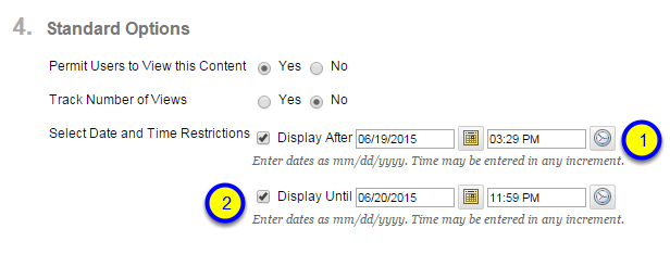 Click the box next to Display Until and enter the date and time after which the Mashup Item will no longer be available to students.