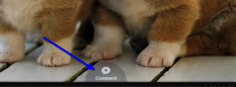 At the bottom of the presentation, click on the (+) Comment icon.