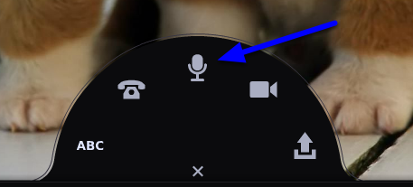 In the expanded menu, click on the microphone icon to record an audio comment.