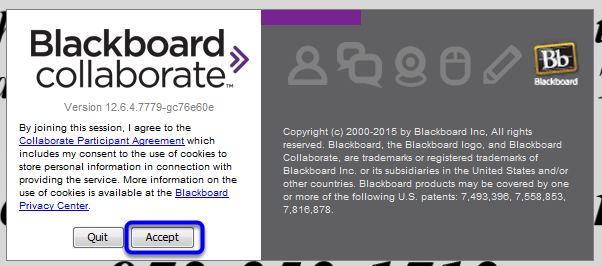 When the application begins to launch, click Accept to agree to the terms set by Blackboard Collaborate.