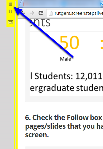 When you are finished sharing your screen, click on the square stop icon on the yellow sidebar.