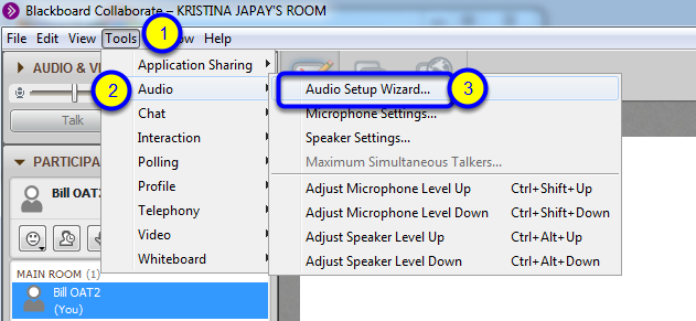 In Blackboard Collaborate, click on Tools, then Audio, then Audio Setup Wizard.