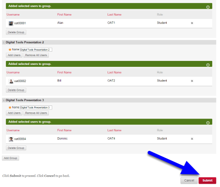 Continue adding students until all students have been assigned to a group and click Submit.
