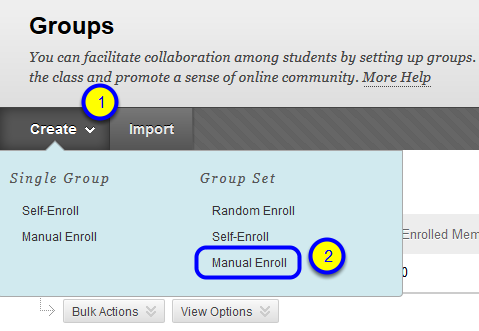 """Hover your mouse over the Create button, and in the """"Group Set"""" section, click """"Manual Enroll"""" in the drop-down menu."""