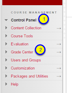 In Course Management, Control Panel, click Grade Center.