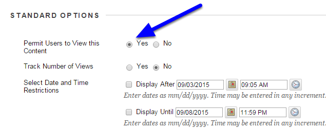 """In the """"Standard Options"""" section where it says """"Permit Users to View this Content,"""" click next to the Yes button."""