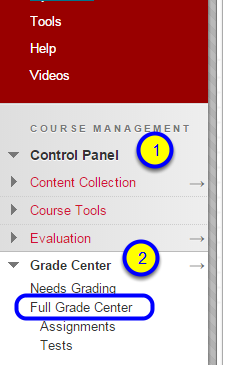 In your course in Blackboard, go to Control Panel, Grade Center, and Full Grade Center.