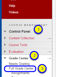 In your course, go to the Course Management section and select Control Panel, Grade Center, and the Full Grade Center.