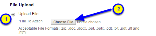 Click Choose File.