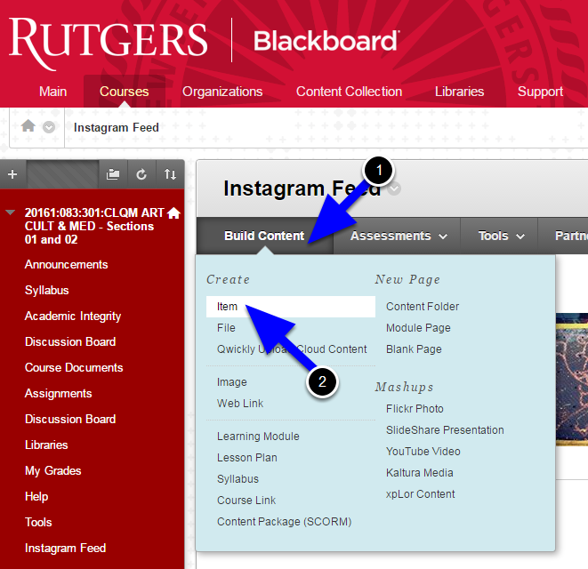 Switch over to Blackboard and navigate to the location where you want to insert the Instagram feed. Create the item, announcement, or post. The example below is adding an Item in a Content Area.