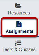 Go to the Assignments tool.