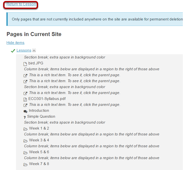 Click Return to Lesson or on any of the page links to return to Lessons view.