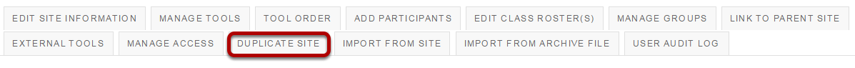 Click Duplicate Site.