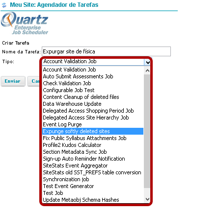 Selecione o Tipo Expunge Softly Deleted Sites no menu suspenso.