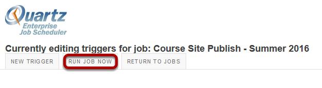Click Run Job Now to run the job manually.