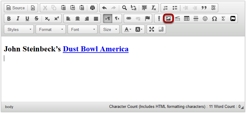 Click Insert/Edit Image icon.
