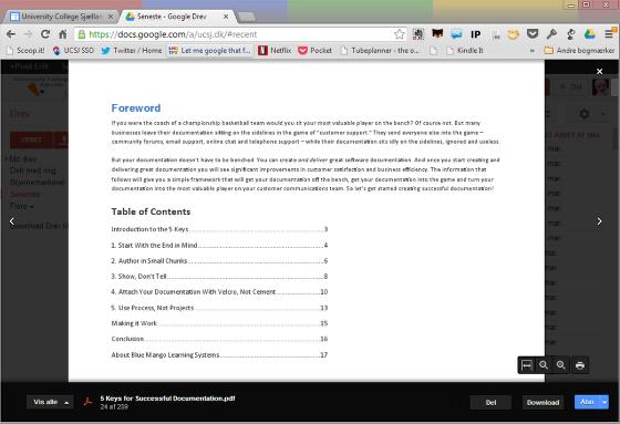 Google Drev PDF - læser