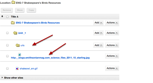 Notice the image URL link automatically placed in Resource folder.