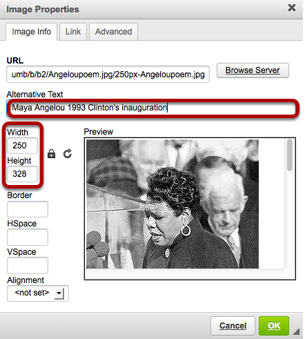 Adjust the image width and height if needed and add an alternative text for screen readers.
