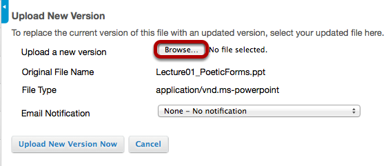 Click Browse, locate the new version of the file and click Open.