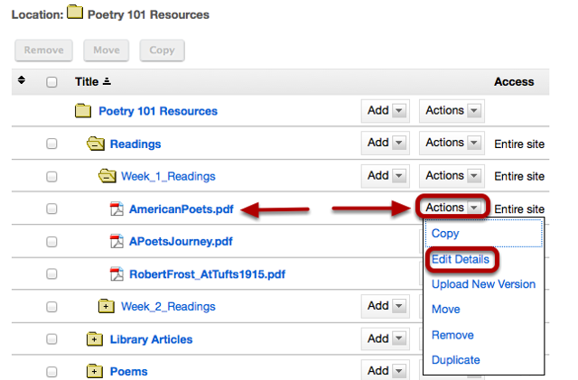To add contextual information, to the right of the file or folder, click Actions / Edit Details.
