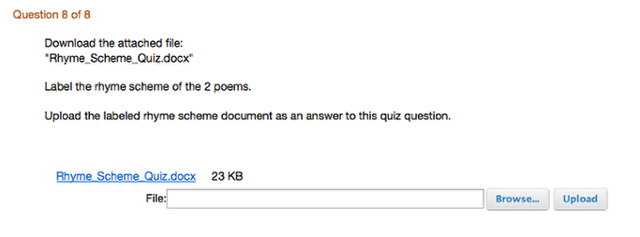 Example of what the File Upload question looks like from the student view: