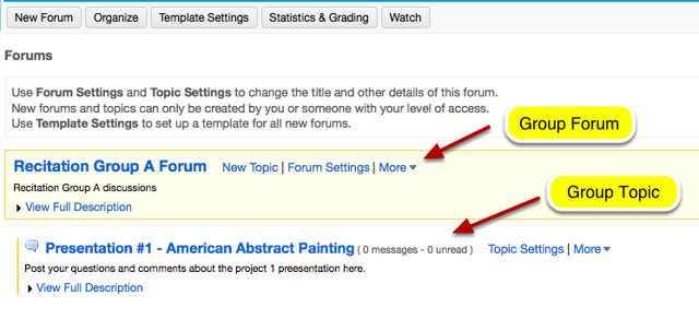 Example of a Group Forum with a discussion Topic.