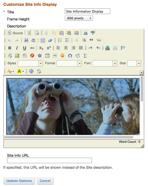 To Edit a Project Site Info Display, click the Edit icon in the upper right corner of the panel.
