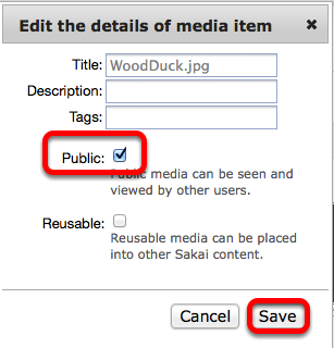 """Checkmark """"public"""", then click Save"""