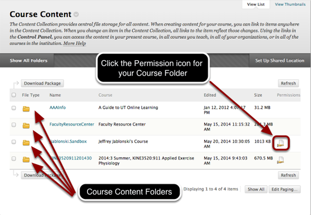 Step 2b - Select Permissions for All Course Content (List View)