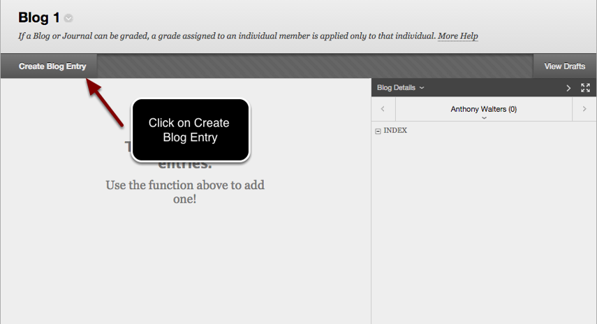 Image of the Blog page with an arrow pointing to the Create Blog Entry button at the top of the page, with instructions to click on Create Blog Entry.