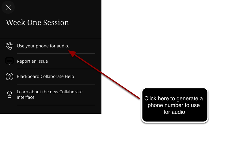 Set Up Telephone for Audio