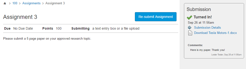The assignment submission confirmation will display.