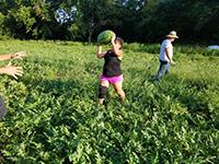 G-J Natural Farms