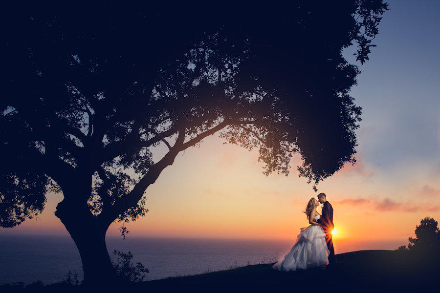 A wedding photography sunset image of the bride and groom under a large tree and its leaves.