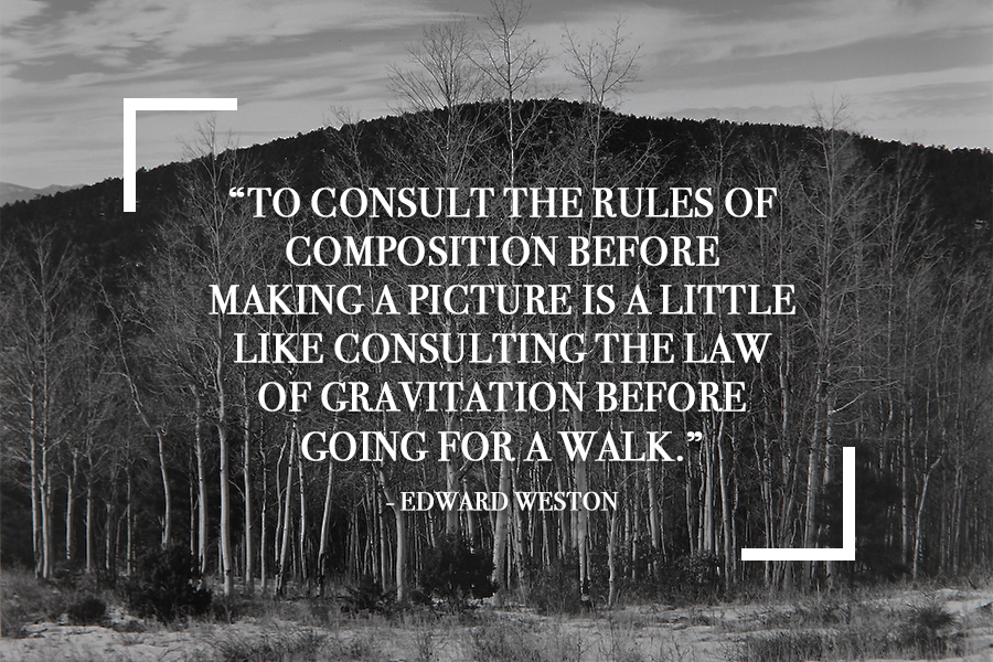40 Of The Best Photography Quotes From Top Photographers Adorable Photography Quote
