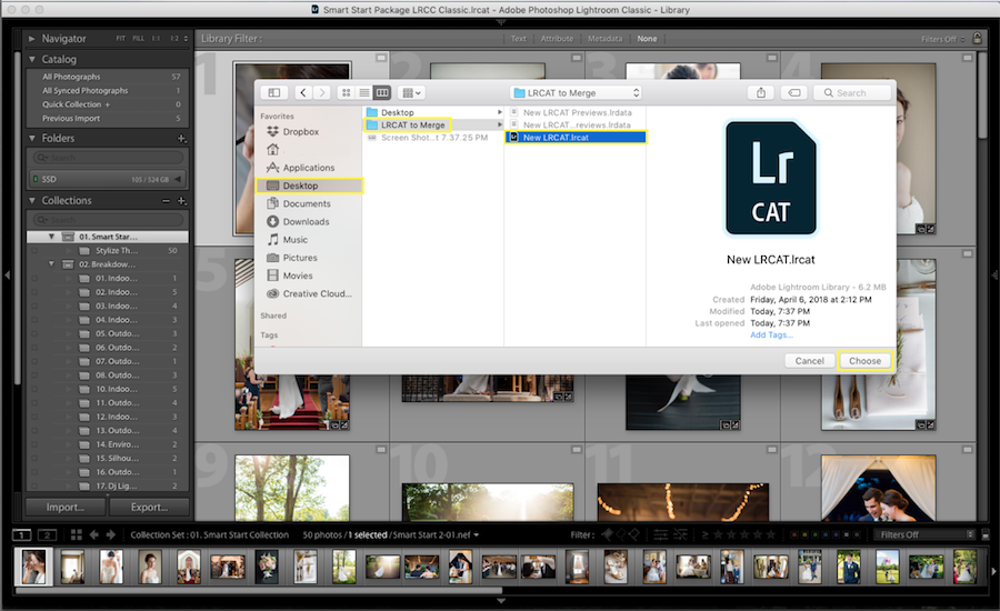 lightroom select new catalog