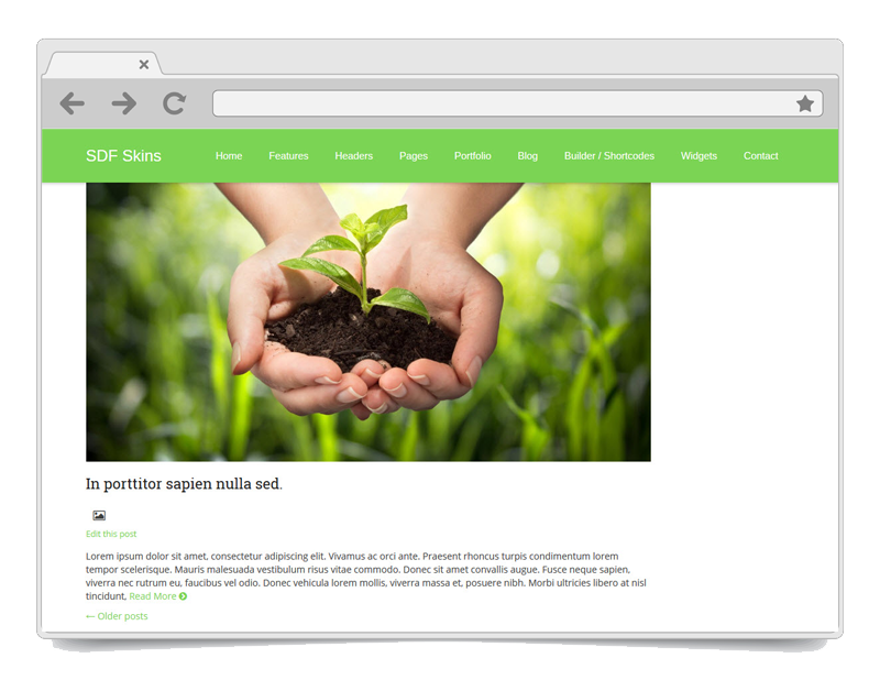 Evergreen WordPress theme
