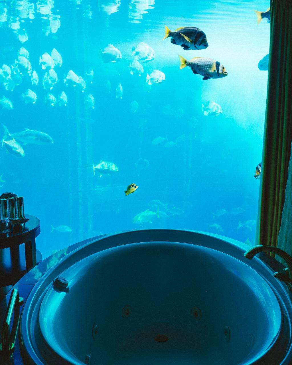 Atlantis Internet Cafe