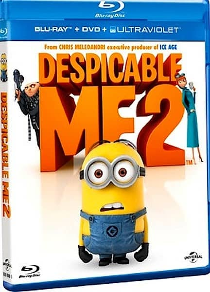 download despicable me 2 sub indo hd