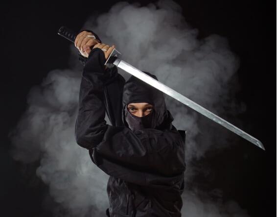 ninja288900