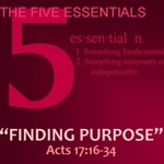 The_five_essentials_-_finding_purpose_half