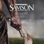 2014-9_samson-highlight_half