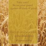 Wheat_half