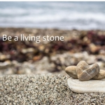 Living_stone_half